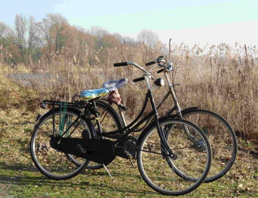 roubo bike